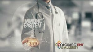 tips for immune support to stay healthy